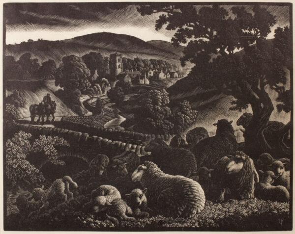 TUNNICLIFFE Charles Frederick O.B.E. R.A. R.E. (1901-1979) - Sheep in a spring wood.