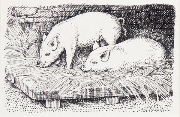 TUNNICLIFFE Charles Frederick O.B.E. R.A. R.E. (1901-1979) - Piglets.