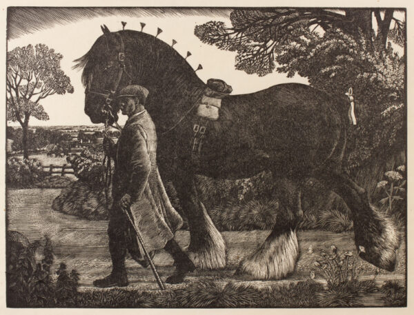 TUNNICLIFFE Charles Frederick O.B.E. R.A. R.E. (1901-1979) - The Shire Stallion.