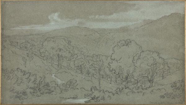 TURNER of Oxford, William (1789-1862) - 'North Devon, Woods of Holne Chase (?Buckfast)'.